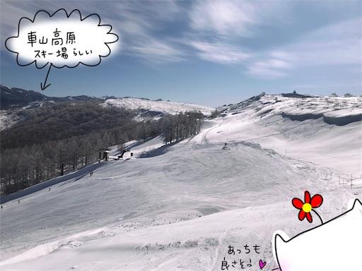 f:id:yukinekokei:20200123122013j:image