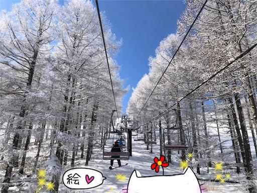 f:id:yukinekokei:20200123141712j:image
