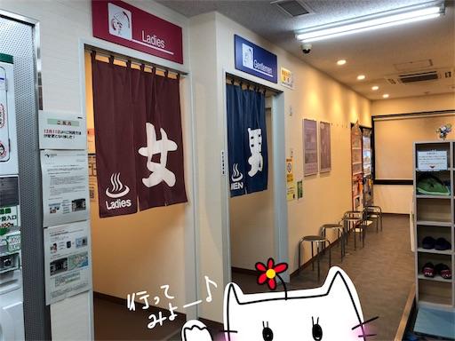 f:id:yukinekokei:20200201193635j:image