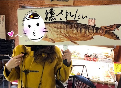 f:id:yukinekokei:20200206122347j:image