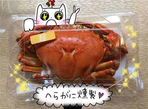 f:id:yukinekokei:20200206212333j:image