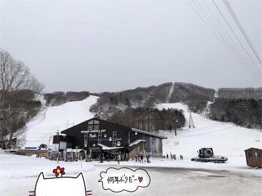f:id:yukinekokei:20200212201951j:image