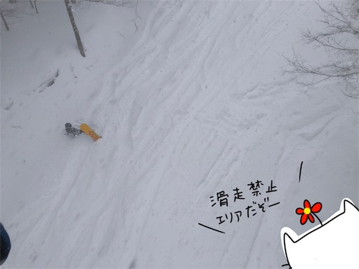 f:id:yukinekokei:20200212201956j:image