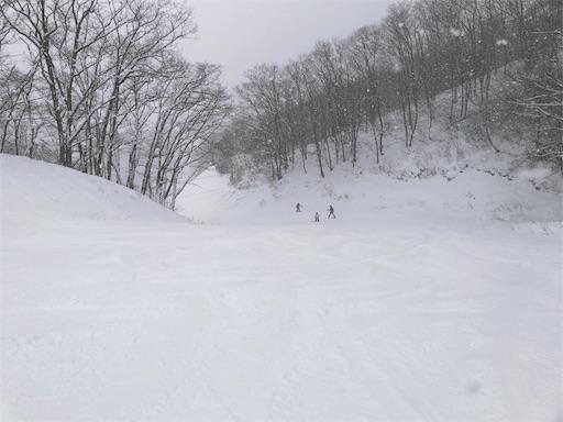 f:id:yukinekokei:20200212202354j:image
