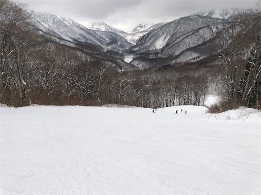 f:id:yukinekokei:20200212203043j:image