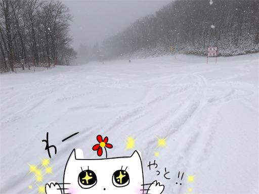 f:id:yukinekokei:20200217180929j:image