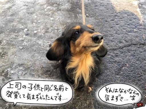 f:id:yukinekokei:20200222124028j:image