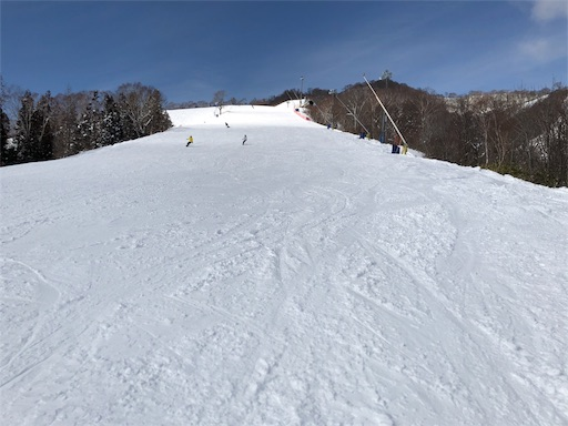 f:id:yukinekokei:20200222124138j:image