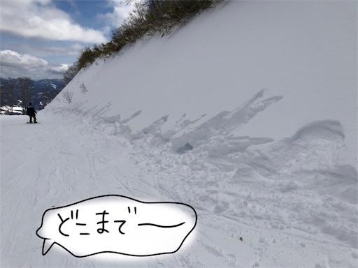 f:id:yukinekokei:20200222124432j:image