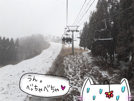 f:id:yukinekokei:20200222130133j:image