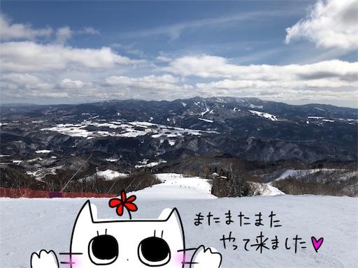 f:id:yukinekokei:20200222181733j:image