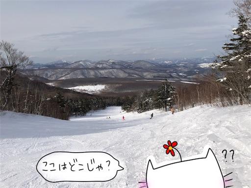 f:id:yukinekokei:20200305175949j:image