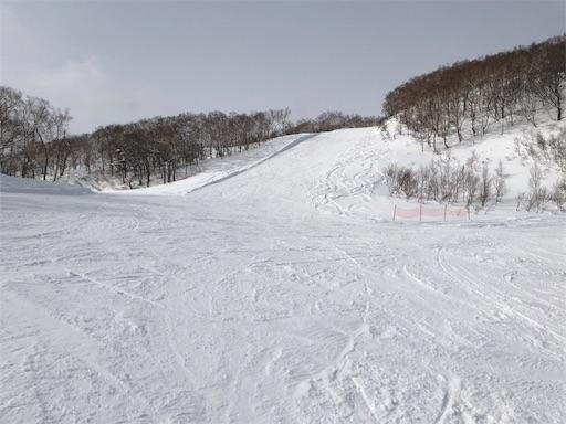 f:id:yukinekokei:20200307085954j:image