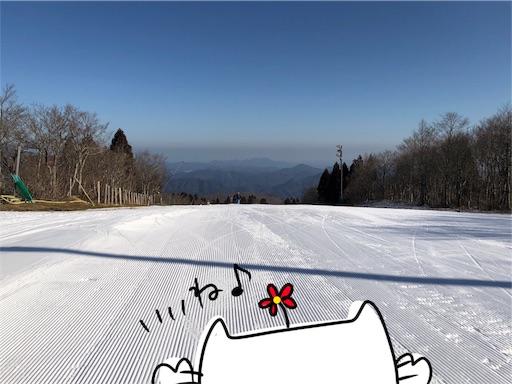 f:id:yukinekokei:20200313085210j:image