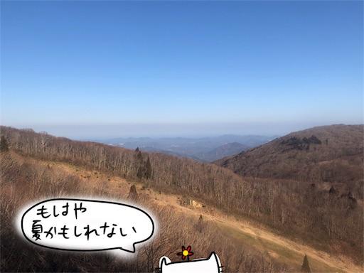 f:id:yukinekokei:20200313141551j:image