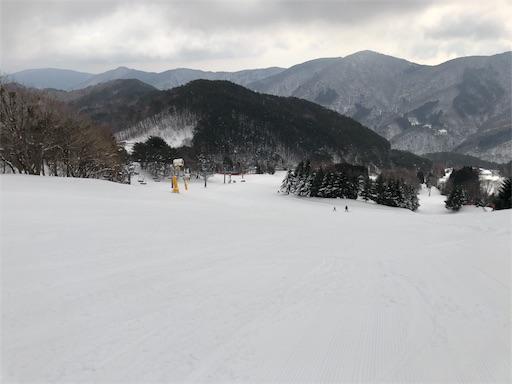 f:id:yukinekokei:20200317170047j:image