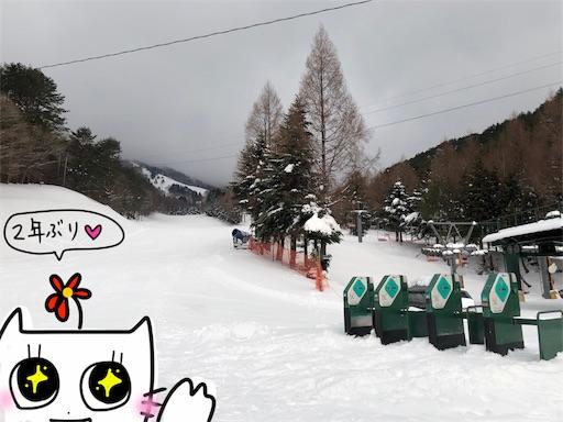 f:id:yukinekokei:20200317204602j:image