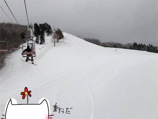 f:id:yukinekokei:20200317204731j:image