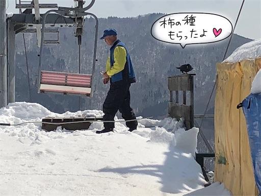 f:id:yukinekokei:20200317204850j:image