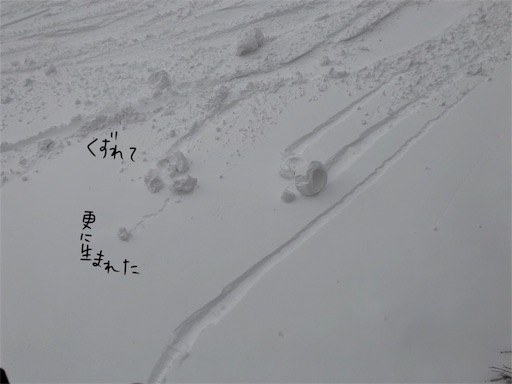 f:id:yukinekokei:20200317204953j:image