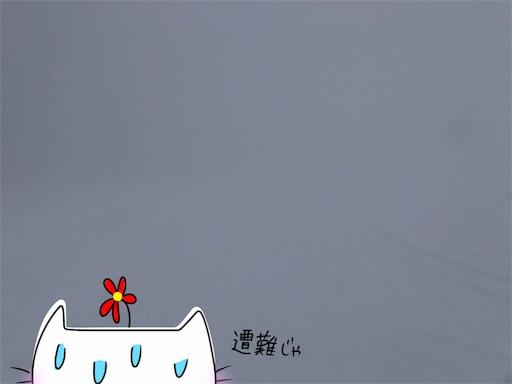 f:id:yukinekokei:20200323122946j:image