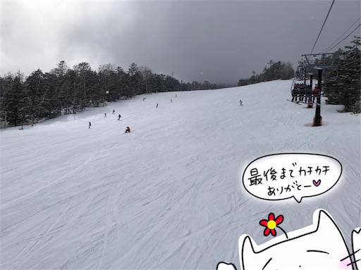 f:id:yukinekokei:20200323123015j:image