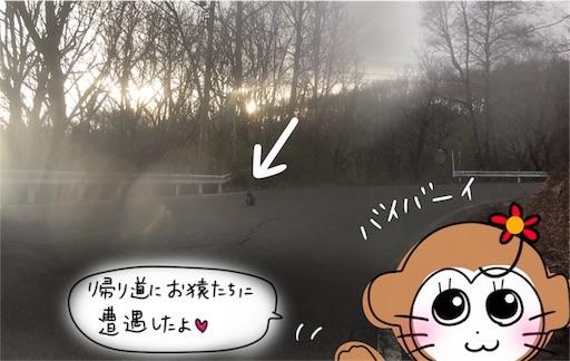 f:id:yukinekokei:20200323152129j:image