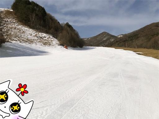 f:id:yukinekokei:20200323235419j:image
