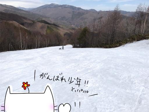 f:id:yukinekokei:20200325213239j:image