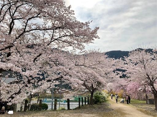 f:id:yukinekokei:20200403211640j:image