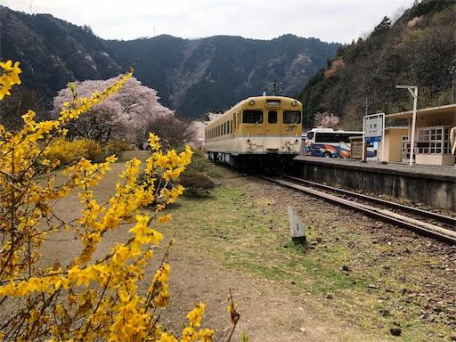 f:id:yukinekokei:20200403211653j:image
