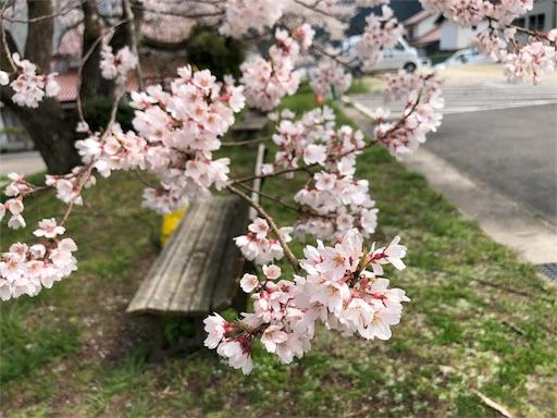 f:id:yukinekokei:20200403211657j:image