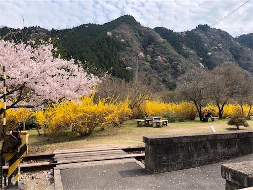 f:id:yukinekokei:20200403211724j:image
