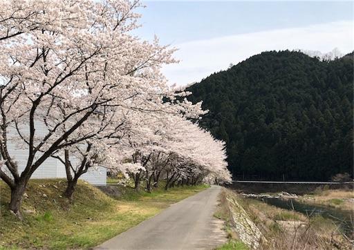 f:id:yukinekokei:20200403211734j:image