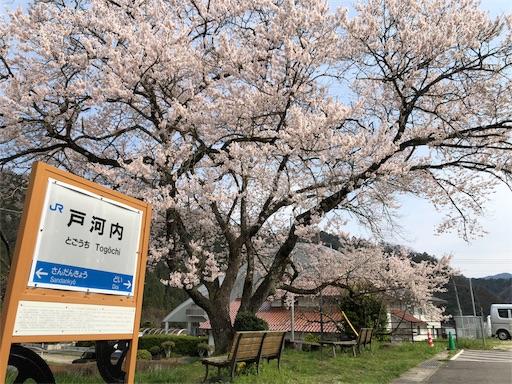 f:id:yukinekokei:20200403211759j:image