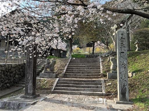 f:id:yukinekokei:20200403212150j:image