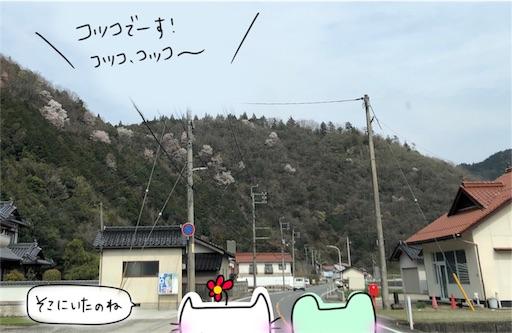 f:id:yukinekokei:20200404123432j:image