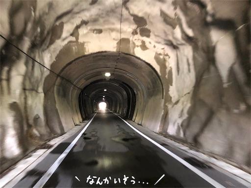 f:id:yukinekokei:20200404124750j:image