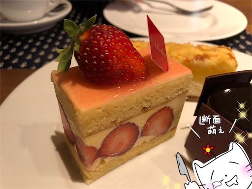 f:id:yukinekokei:20200424171251j:image