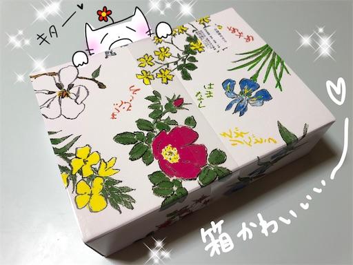 f:id:yukinekokei:20200502233616j:image