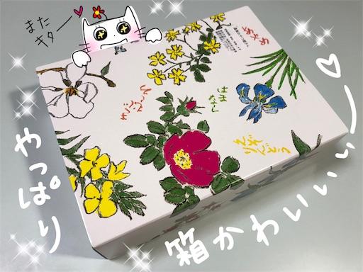 f:id:yukinekokei:20200514002815j:image