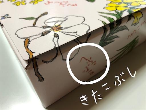 f:id:yukinekokei:20200525211004j:image