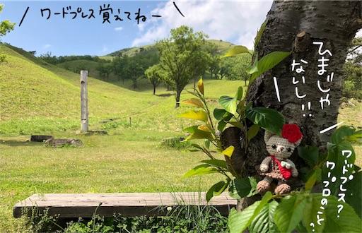 f:id:yukinekokei:20200530195853j:image