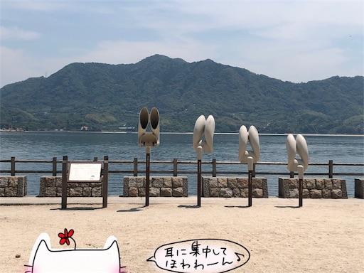 f:id:yukinekokei:20200606203707j:image