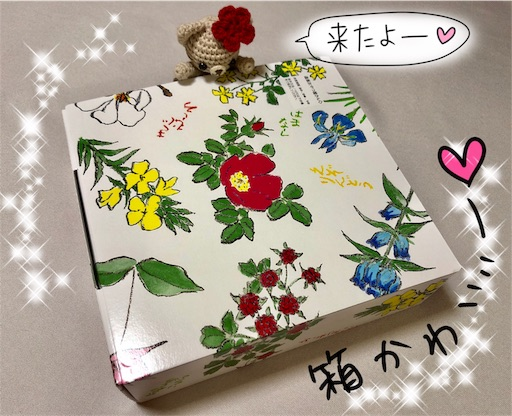 f:id:yukinekokei:20200608234737j:image
