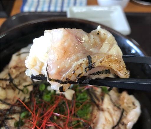 f:id:yukinekokei:20200618093459j:image