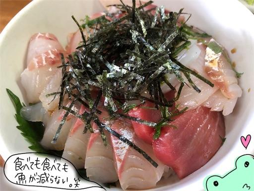 f:id:yukinekokei:20200621083819j:image