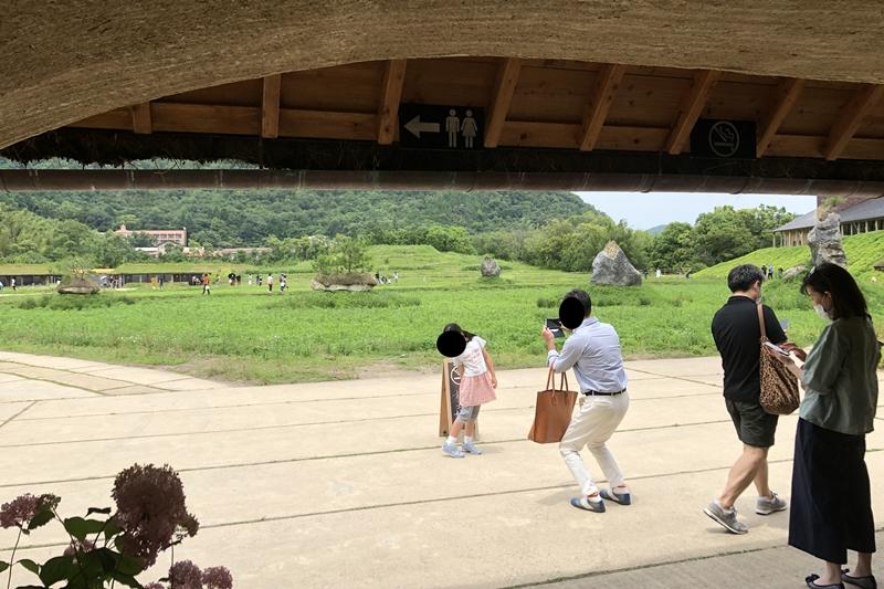 f:id:yukinekokei:20200629205555j:plain