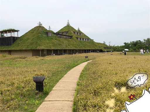 f:id:yukinekokei:20200702200302j:image