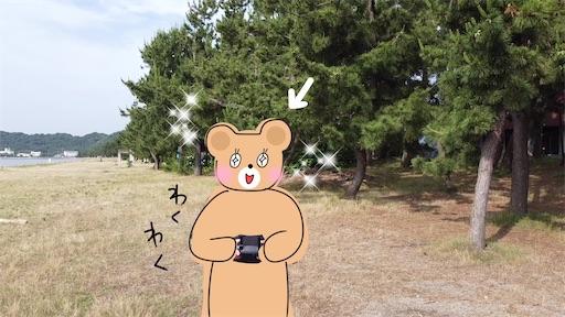 f:id:yukinekokei:20200713180544j:image